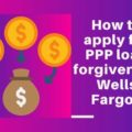 wells fargo ppp loan online application