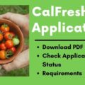 CalFresh Application online status requirements